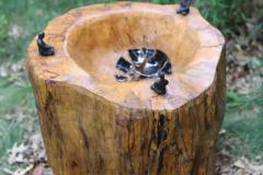 Earth, Tree, Bowl