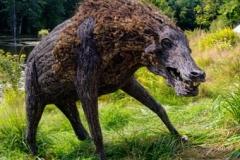 15) Robert Shannahan: Boar